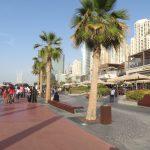 Ekskurziqa_Dubail_14