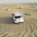 Ekskurziqa_Dubail_20